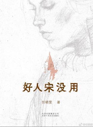 《好人宋没用》  任晓雯  北京十月文艺出版社